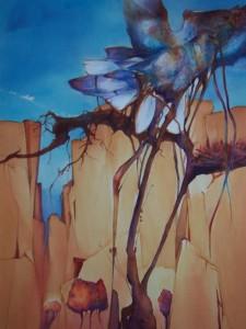 Canyon Dwellers